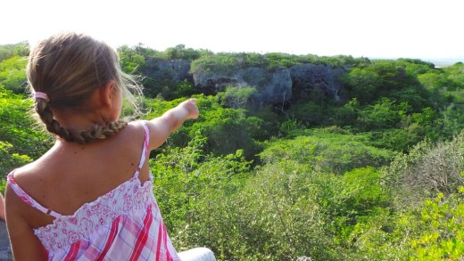 Expeditie Roi Rinkon | Picture This Curacao - Manon Hoefman