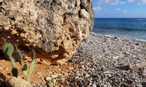 Playa Hulu | Picture This Curacao - Manon Hoefman