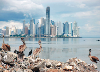 EmuCasino's holding company is registered in Panama, a notorious tax haven. Photo: Getty